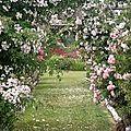 Les amoureux des roses de Romilly