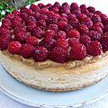Cheesecake citron rhubarbe framboise, où comment j'ai enfin réussi un cheesecake onctueux et pas étouffe chrétien!