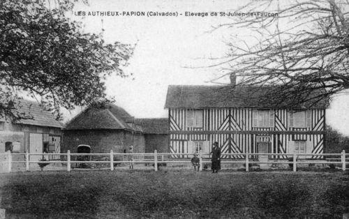 Les Authieux-Papion - élevage de Saint-Julien le Faucon