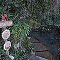 Camou, source d'eau chaude
