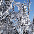 Skier au québec... c'est pas les alpes, mais on a du fun!