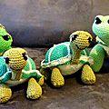 famille tortue de face