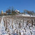 L'église et les vignes de Brainans sous la neige dec 08 - 006