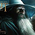 The Hobbit Desolation of Smaug 05