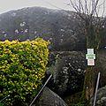 Le Sidrobe, rocher tremblant (81)