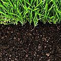 Pour une exception agricole et écologique