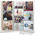 Project Life 2015 - Semaine 6