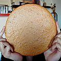 Biscuit géant mélisse-citron