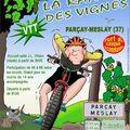 Rando des vignes (37)