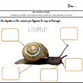 Windows-Live-Writer/Projet-Escargot-Rigolo_D93A/image_thumb_16