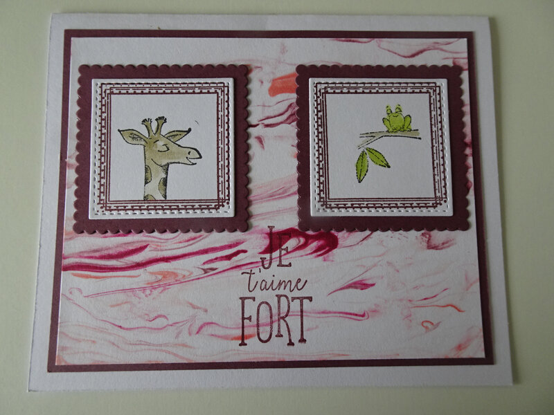 7b Carte Duo d'animaux Swirly frames et carré couture