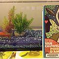 Lire contemporain : poisson d'amour de didier van cauwelaert