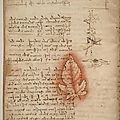 Leonardo da Vinci's <b>Codex</b> on the Flight of Birds at National Air and Space Museum
