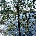 Entre Puumala et Helsinki