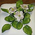 framboisiers en fleurs 002