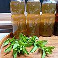 conserves de sirop de menthe - www.passionpotager.canalblog.com