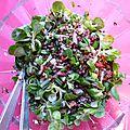 Salade de lentille citron moutarde noisette balsamique (merci phanie pour cette divine sauce!)