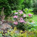 Un petit tour au jardin (2)