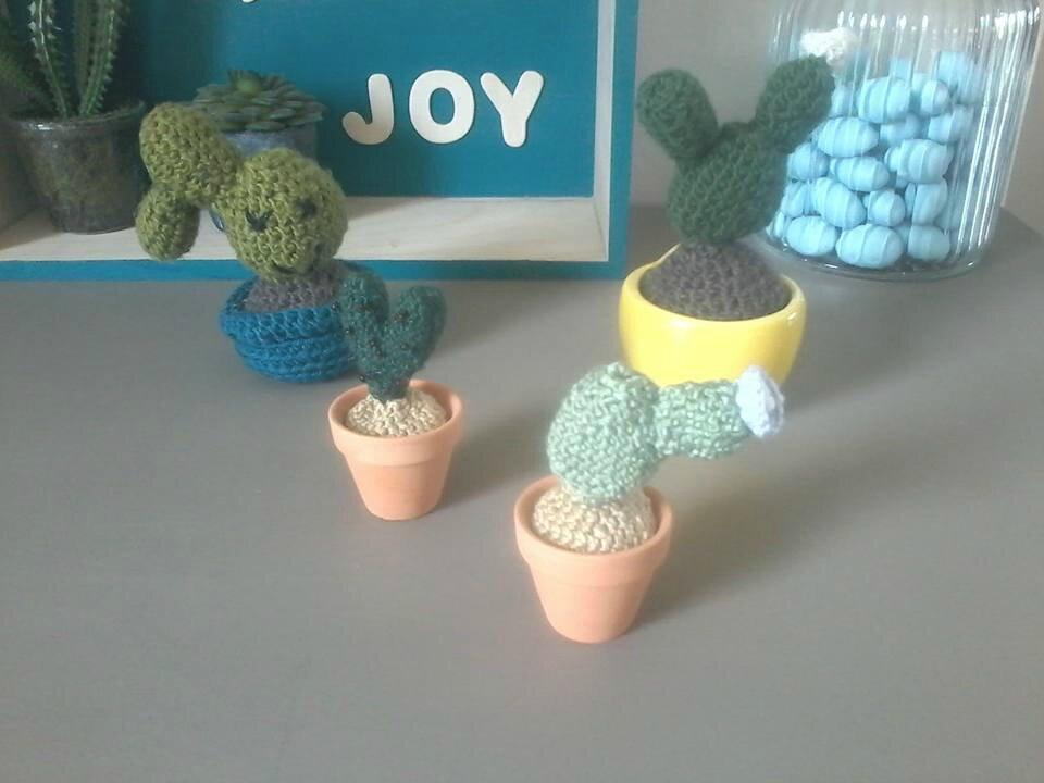 Dans la vie, il y a des cactus...