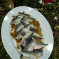 Maquereaux rôtis à la fondue d'oignons, sauce aux anchois