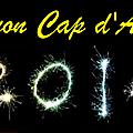 Païs nissart vous souhaite une bonne année 2014
