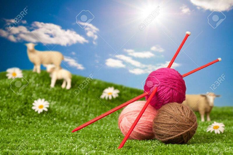 12022265-balles-de-laine-avec-des-aiguilles-à-tricoter-dans-le-pré-avec-des-moutons-notion-à-tricoter