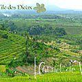 [carnet de voyage] bali, l'île des dieux : amed => benoa