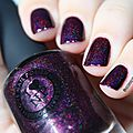 Champagne bush & black orchide by ilnp