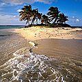 Témoignage : l'île merveilleuse