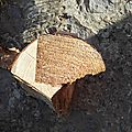 buche decor bois recup lilybouticlou