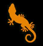le_gecko_logoj