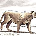lion_des_cavernes