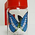 Vintage ... PICHET * Les Papillons