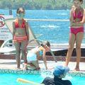 cours de natation (5)