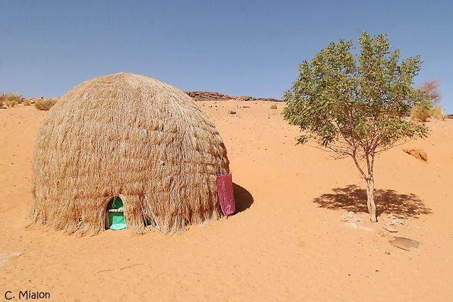 habitat traditionnelle