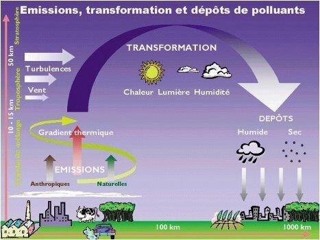 pluies acides et pesticides HNO3 conséquence sur nos forets