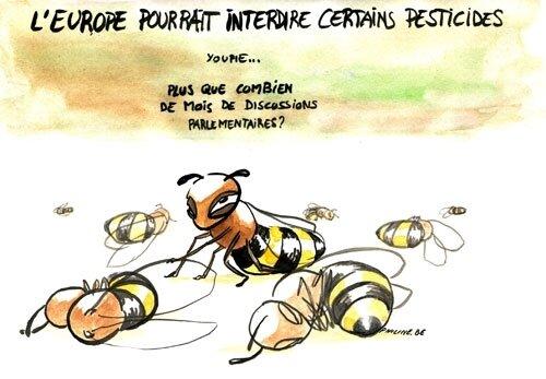 Nous venons de remporter l'interdiction totale de pesticides tueurs d'abeilles dans 28 pays de l'Union Européenne !
