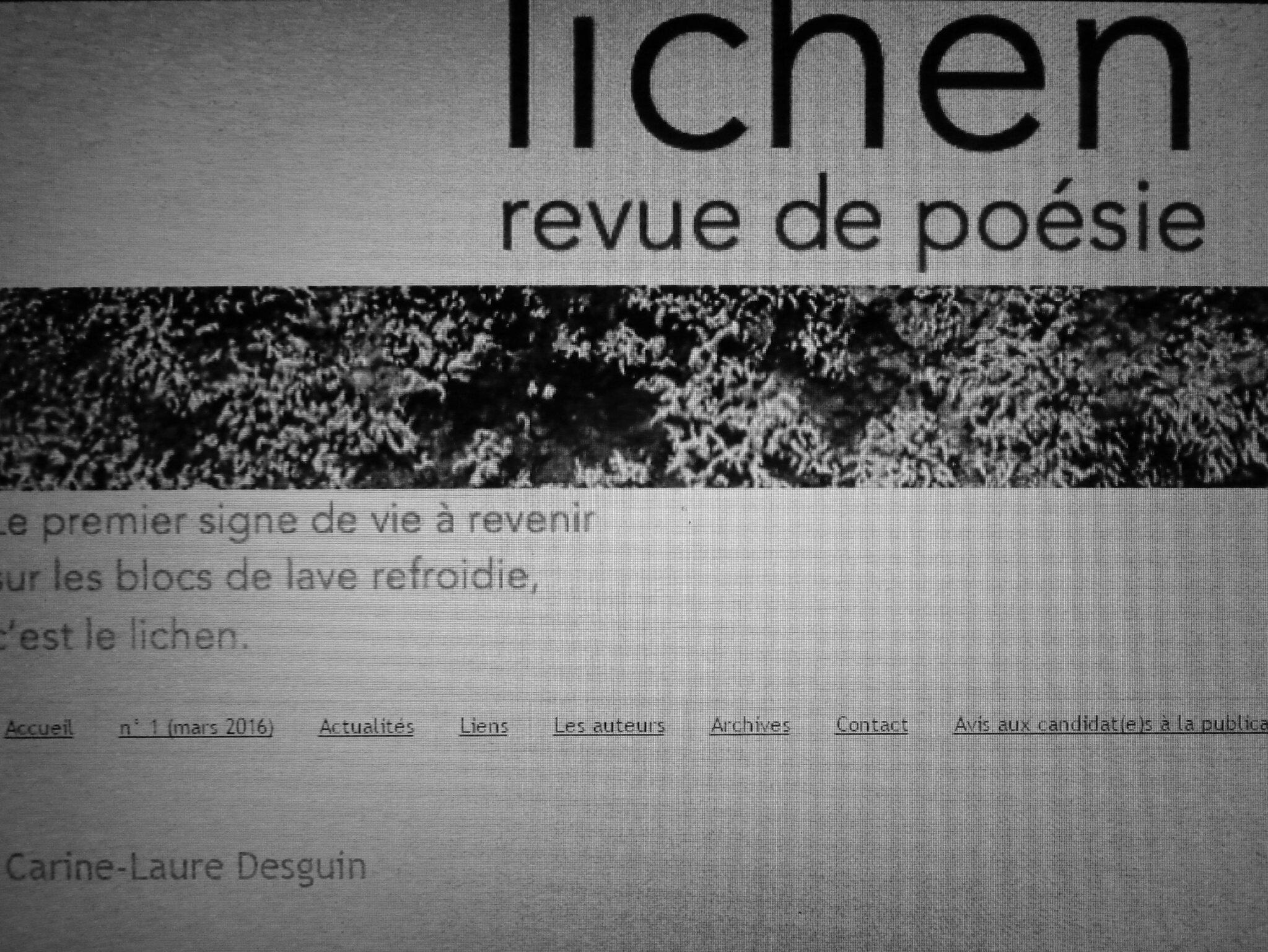 Dans Lichen 12, deux textes de C.-L. Desguin