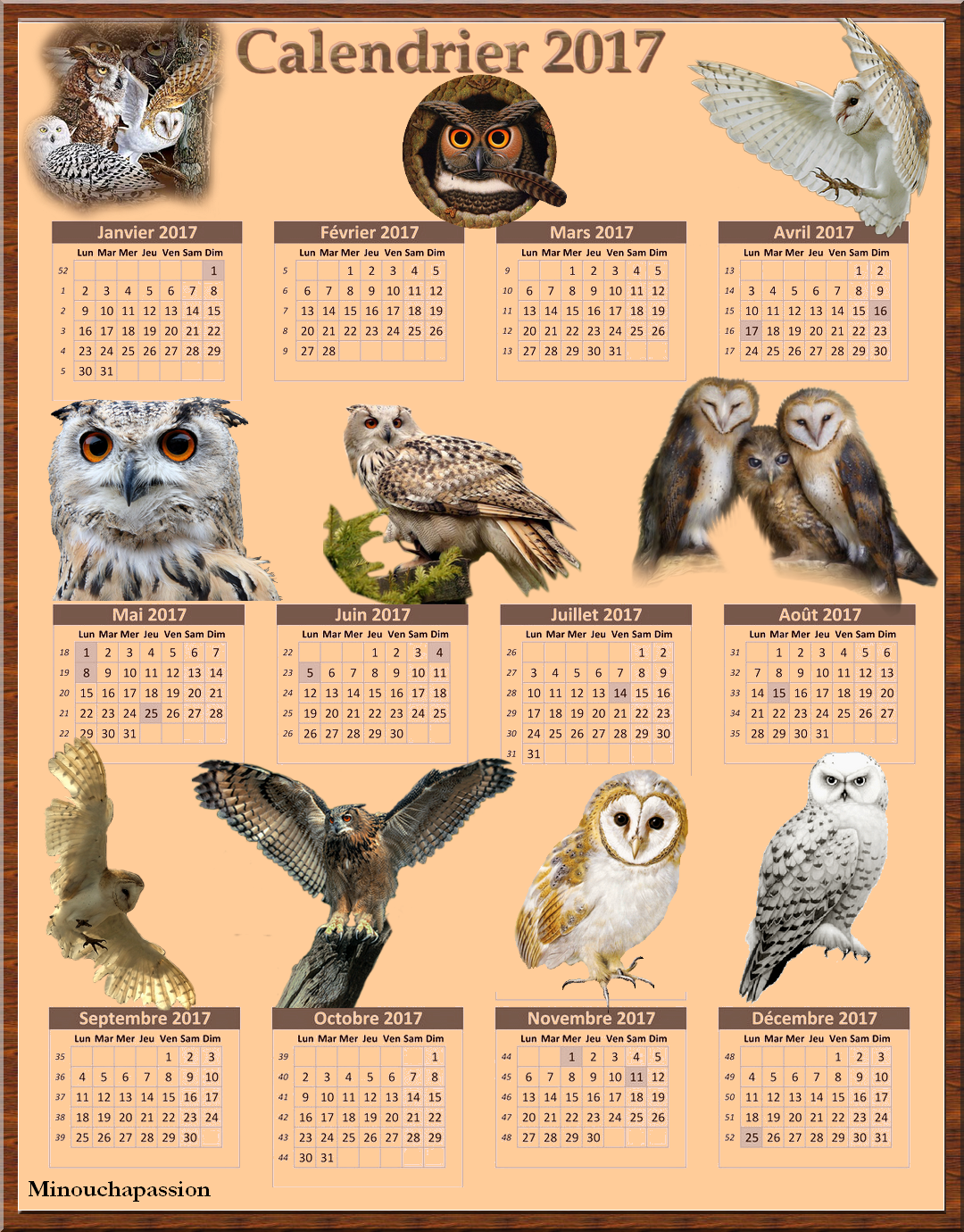 Calendrier 2017 Chouettes