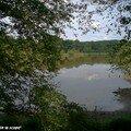 L'étang des marais