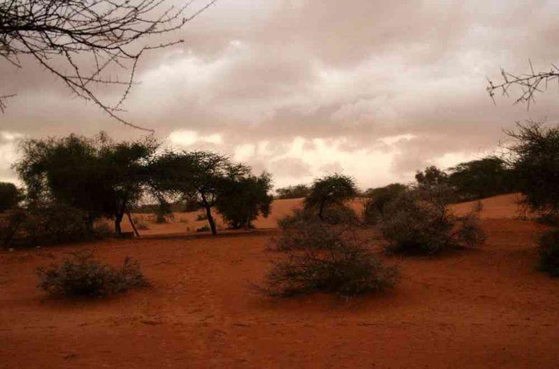 Seckasysteme-Mauritaniemauritania%202007%20007_jpg_rs