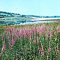 VALJOLY-Le Barrage