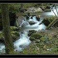 Ruisseau du Gros Mont, décembre 2006