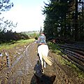 Balade à cheval dans la forêt P1080194