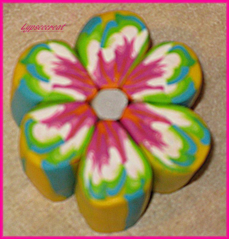cane-fleur-multicolore