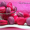 MacaronsGrily4