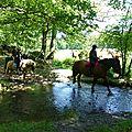 balade equestre gastronomique à La Lucerne d'Outremer (68)