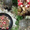 Petits coeurs de canard et radis moelleux