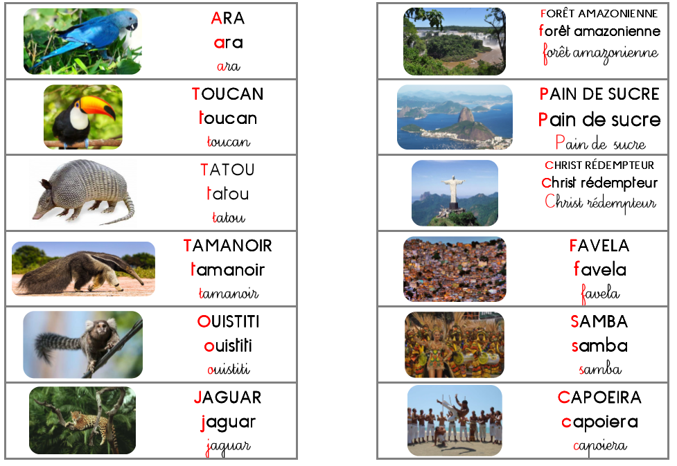 Windows-Live-Writer/Mon-tour-du-monde--le-Brsil_E435/image_52