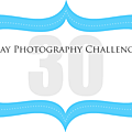Day photography challenge